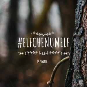 #ElfchenUmElf für deinen Instagram Feed