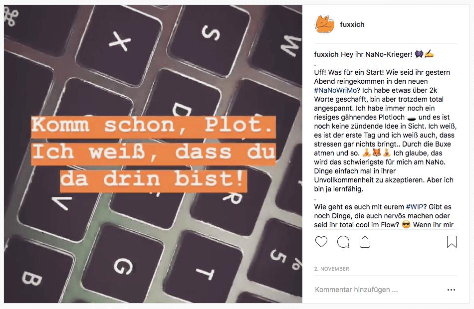 Instapost zum Thema Nano auf meinem Instagram Feed Fuxxich.